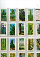 tea cards brooke bond trees of north america ( canada ) 1968 full set