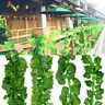 Artificial Hanging Ivy Leaf Begonia Garland Green Plants Vine Fake Foliage Decor