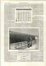 Sistema TELEGRAFICO 1891 Scatola di prova PROVINCIALE Galleria Stanza della batteria