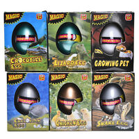 Magic Hatching Dinosaur Egg Growing In Water pets Children Kids Gift Toy AnRGS