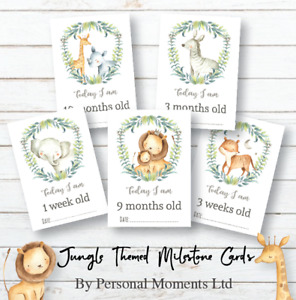 Jungle Baby Milestone Cards • Baby Shower Gift • New Baby Gift • Boy Girl