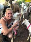 Goat Collar-Hemp Adjustable Sheep Collar Red,Blue,Green,Beige, Pink, Black