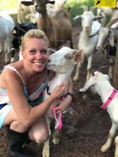 Goat Collar Hemp Adjustable Sheep Collar Redbluegreenbeige Pink Black