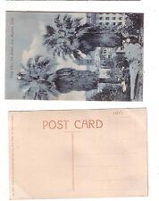 ca. 1910  postcard - Vista Thro' the Palms Los Angeles (surface flakes) stk#YAFJ