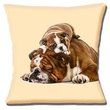 "English Bulldog & Puppy 16""x16"" 40cm Cushion Cover 'Climbing on Dad' Cream"