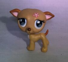 LPS Littlest Pet Shop Brown Tan Whippet Dog #498 Blue Eyes With Flowers
