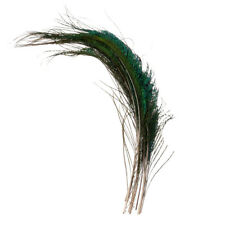 10pcs Peacock Sword Feathers for Hat Handbag Earring Craft Costume Making