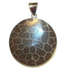 P2642f Brown Dilated Conch Shell 33mm Flat Round Pendant w Steel Bail & Backing