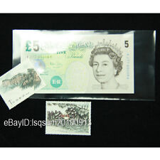 100pcs General Size Paper Money Currency Stamp Sleeves 17CM*8.2CM Holders
