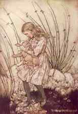 A4 Photo Rackham Arthur 1907 Alice with the pig baby Print Poster