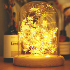 2M 120 LED Twinkling Stars Warm White Micro Wire Bendable Fairy Lights Xmas Vase
