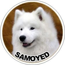 2 Samoyed Car Stickers By Starprint - Auto combined postage