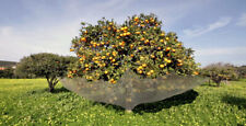 Fruit Catcher for better home gardening & growers Harvesting