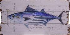 BILD 30 x 60CM HOLZBILD HOLZTAFEL- Fisch 01 - Motiv einer Postkarte
