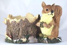 More details for 28cm squirrel planter - 5 inch pot - wildlife - garden gift - house plant