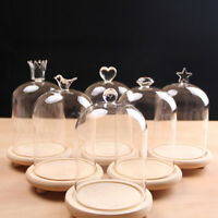 Glass Display Bell Jar Dome Cloche With Wood Base Decorative Desk Vintage Stand