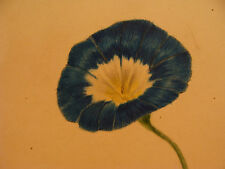Original ART: folk art drawing of FLOWER, signed M H SIMPSON,  GREAT COLOR