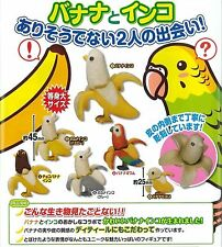 Epoch Gashapon Japan Banana Parakeet Parrot Bird Figure Complete Set 6 pcs