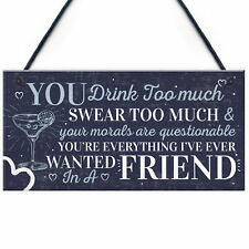 Funny Best Friend Friendship Sign Drink Too Much Alcohol Gin Vodka Birthday Gift