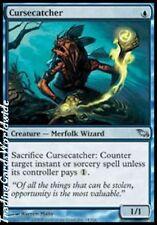 Cursecatcher // NM // Shadowmoor // engl. // Magic the Gathering