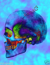 Skull Poster/Einstiens Theory of Realitivy/ E=MC 2/Psychedelic Skull