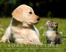 Cat Motivational Poster Art Print Kitten House Toys Pet Supplies Collar  MVP369