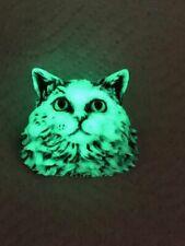 Harmony Kingdom art Neil Eyre Designs Halloween Glow Dark Cat Kitty magnet Le50