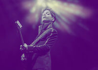PRINCE ROGERS NELSON * QUALITY CANVAS  PRINT