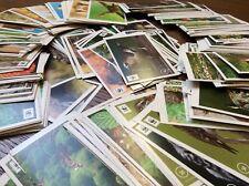 """Edeka WWF Sticker 30 aussuchen aus 180, Sammelbilder aus """"Unser Wald"""""""