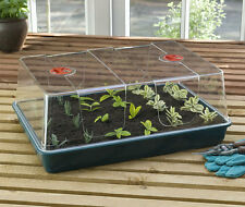 Xl High Dome Propagator Seed Starter Germinate Tomato Herb Vegetable Flower Tree