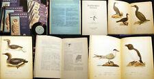 1925 ORNITHOLOGY BIRDS DENMARK DANMARKS WITH BIRD SONG RECORDS COMPLETE