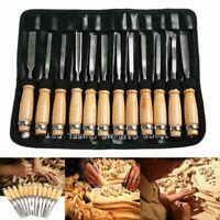12 Pcs Wood Carving Hand Chisel Tool Set Professional Woodworking Gouges Steel L
