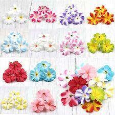 "30Pcs Plumeria/Frangipani 3.1"" Head Artificial Silk Flower Heads Wedding Decor"