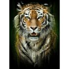 5D DIY Full Drill Diamond Painting Tiger Cross Stitch Kits Family Art Decor Gift