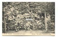 Batum, Batumi, Georgia - Aleksandrovskij Park - old Russia postcard