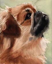 Giclee Print Pekingese Dog Watercolor Painting Art Pet Portrait