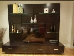 Wall unit with discreet storage and tv stand. Chocolate color and modern