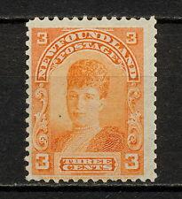 (NNAV 221) NEWFOUNDLAND 1898 MLH MICH 64