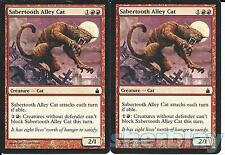 MTG Magic the Gathering TCG RAVNICA 2X Sabertooth Alley Cat Creature Red 140