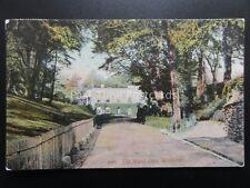 Devon SIDMOUTH The Royal Glen c1908 Old Postcard