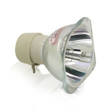 BL-FU190D SP.8TM01GC01 Replacement Bare Lamp Bulb For OPTOMA GT760 W305ST X305ST