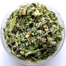 DAMIANA Leaf Cut/Sifted Organic Herb  Fresh *WITH SCENT* 2 lbs.