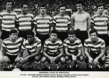 SPORTING LISBON FOOTBALL TEAM PHOTO 1969-70 SEASON