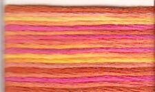 Anchor mouliné, fil à broder 6 fils 8 m 100% coton multicolore 1315
