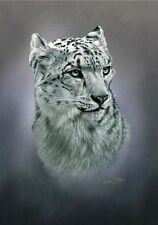 More details for snow leopard head study limited edition print by robert j. may