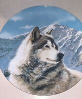 SOLITARY WATCH Plate Wild Spirits Thomas Hirata #1 Gray Wolf Snowy Mountains