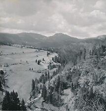 COL DE LA FAUCILLE c. 1950 -  Panorama Jura  - DIV8914