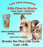 50 CAPSULES Flea Killer For CATS and DOGS 2-30 Lbs. 15 Mg FAST Quick Results NEW