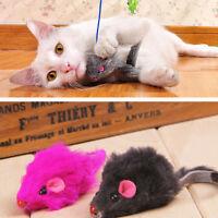 2 X  Kitten Car Spiel  Spielzeug falsche Maus im Rat für Haustier-Katzen neu!