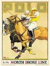 Travel TRANSPORT North Shore Line Railway Polo Sport Pferd USA posterbb 8470b